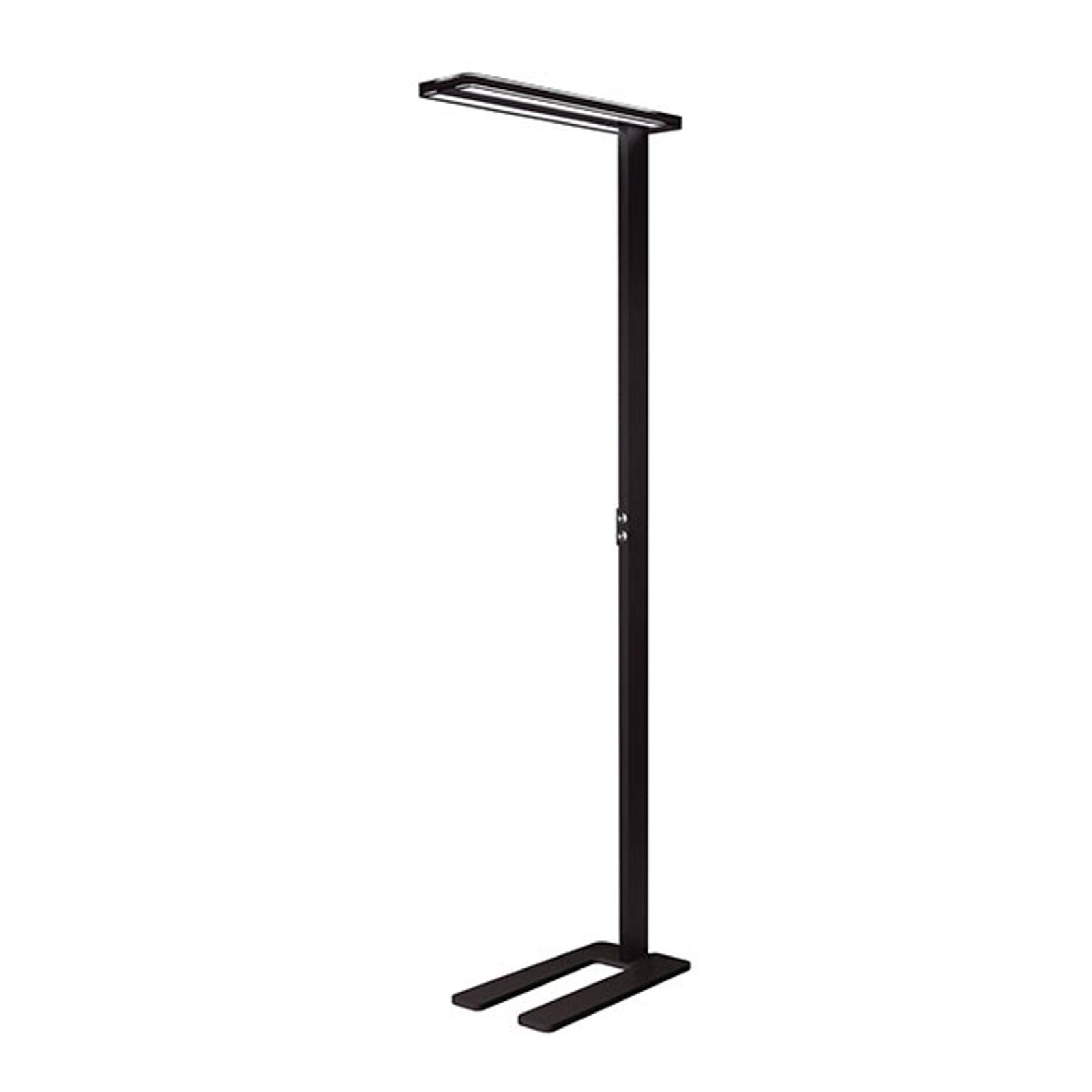 Lampadaire LED Trentino II avec capteur, noir