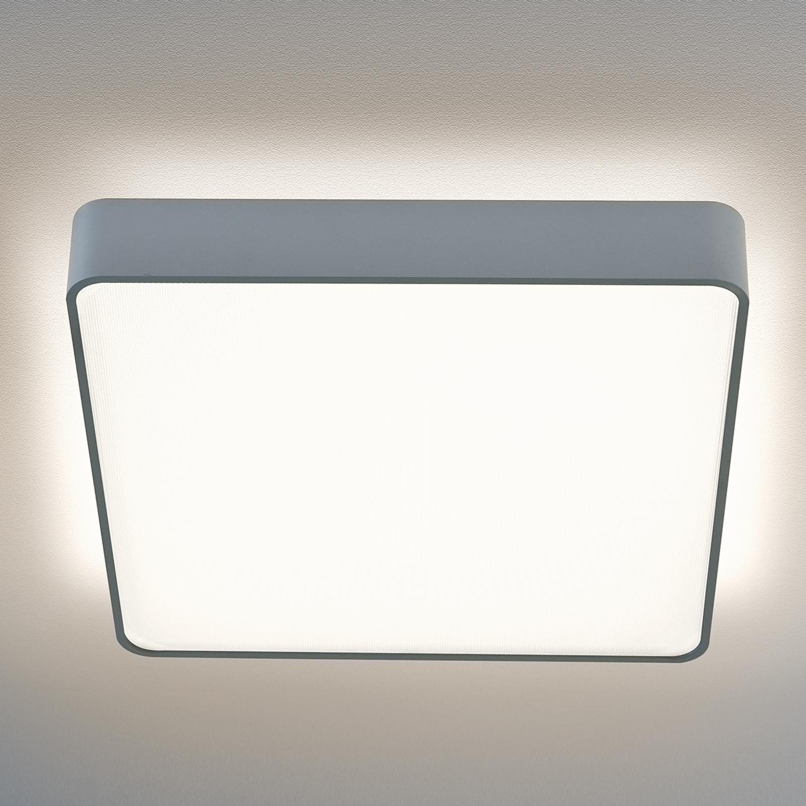 Plafondlamp Led Caleo-X2 ww 61,4 cm