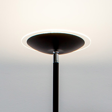 Svart LED-uplight-golvlampa Malea