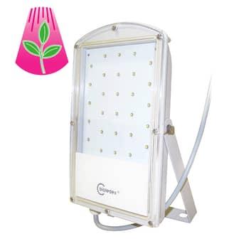 LED-plantlampa GoLeaf 29 W S1 vegetativ tillväxt