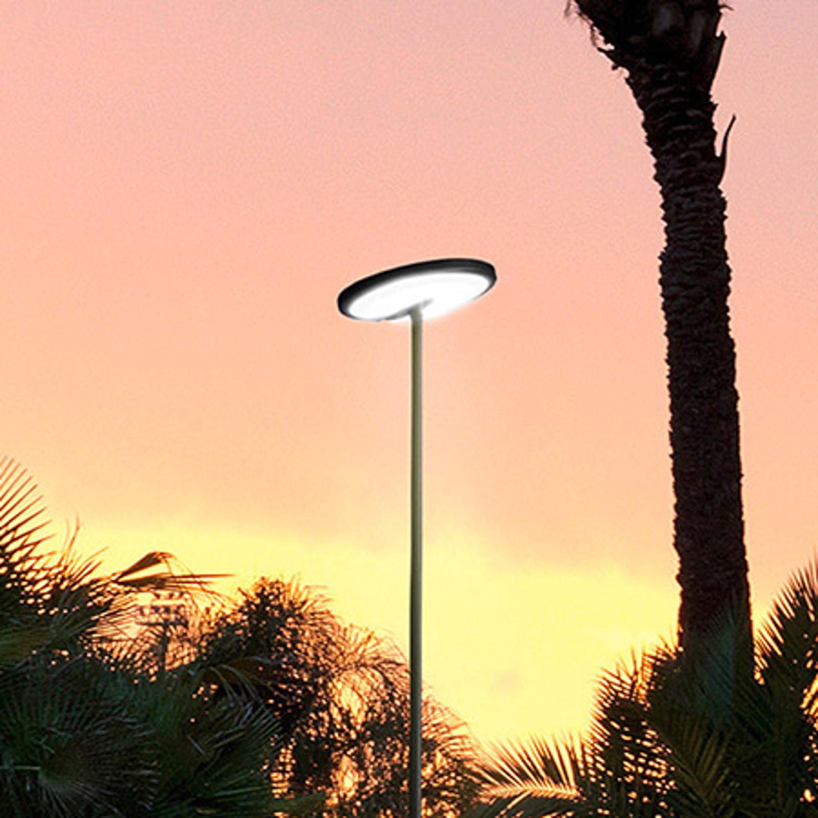 LED-mastovalaisin Invisible IP54