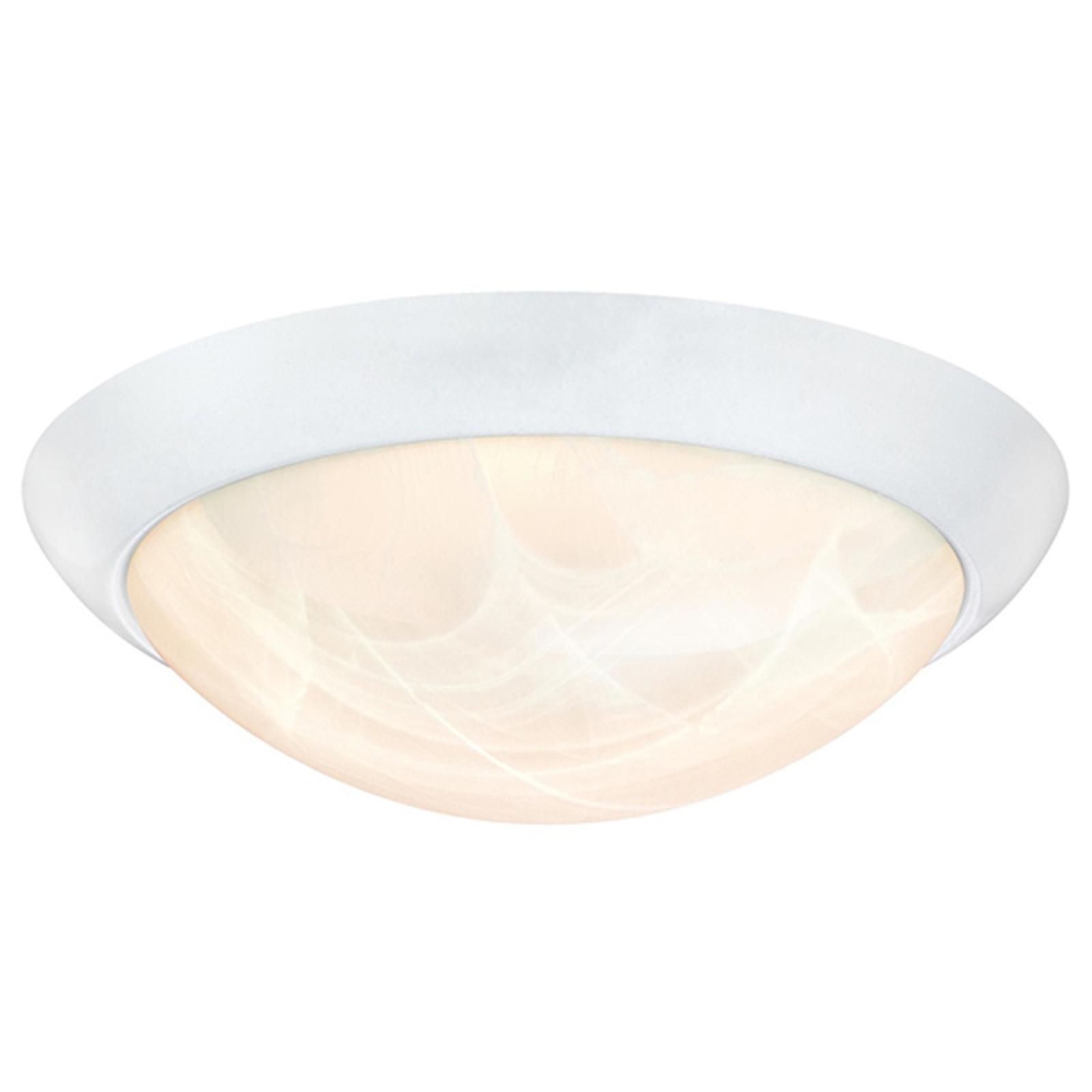 Westinghouse 6106640 LED-loftlampe, hvid