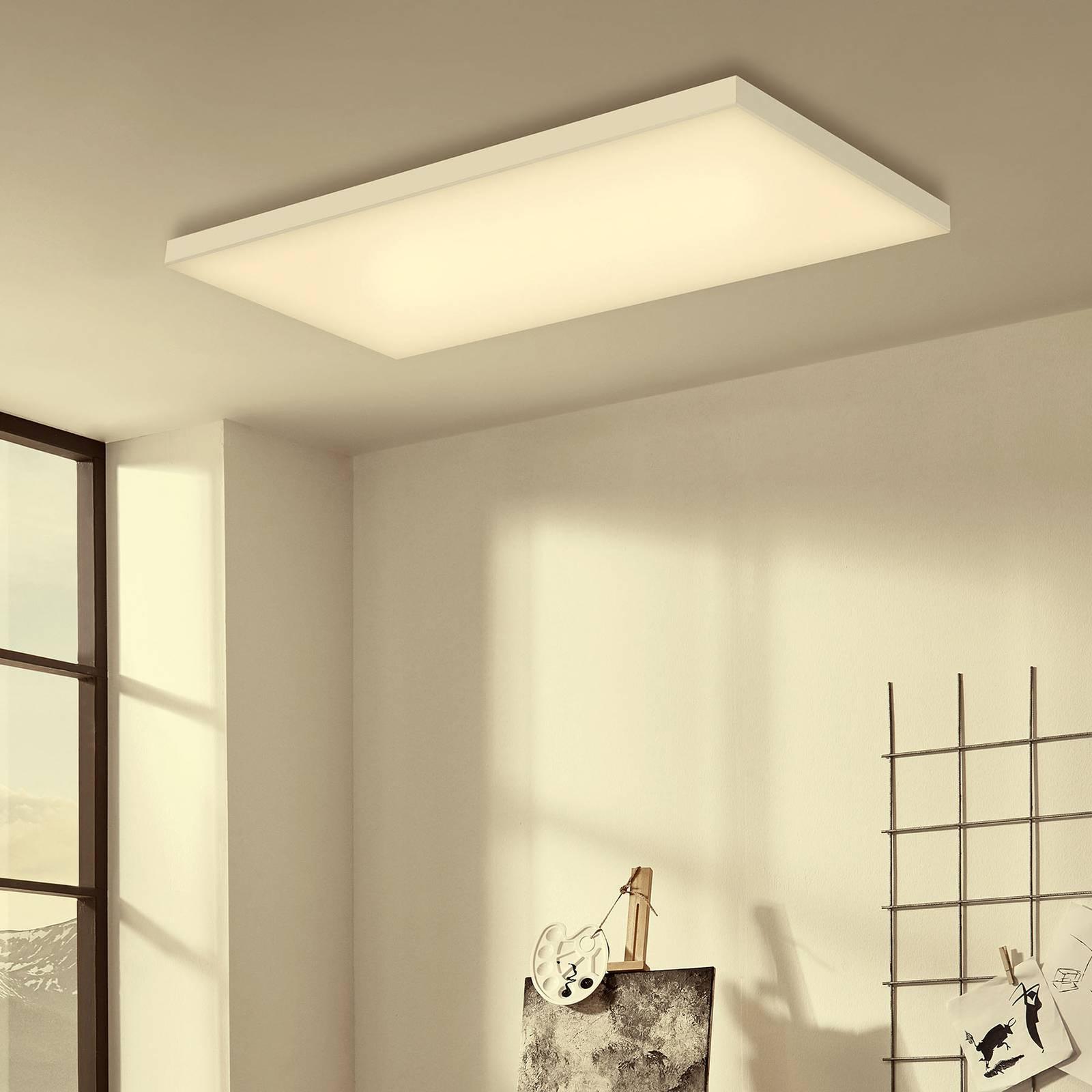 LED plafondlamp Frameless RGBW, 60x30cm