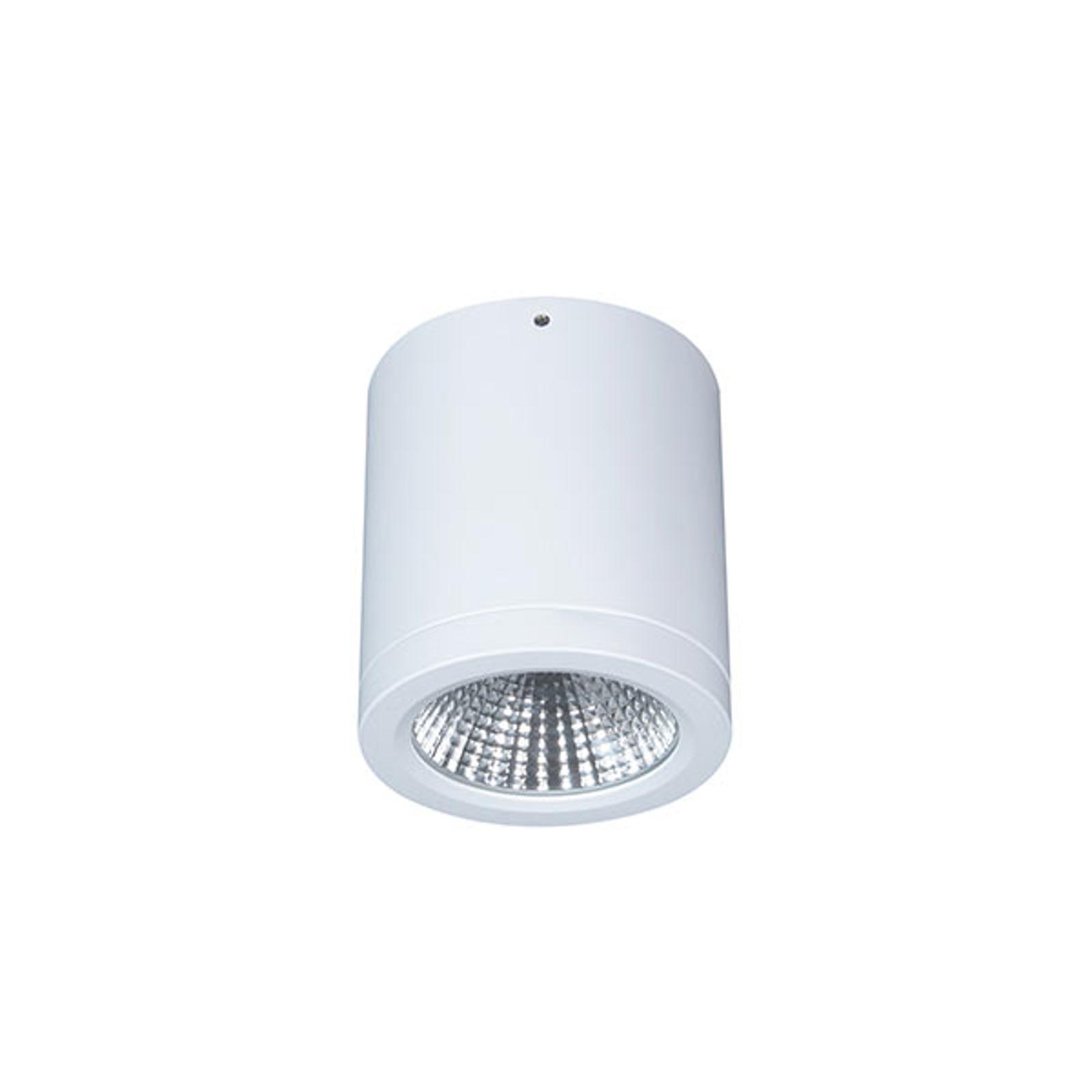 Faretto LED plafone Button Mini 100 IP54 55° 16 W