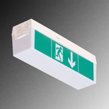 Lampada emergenza C-Lux Standard, 3 ore