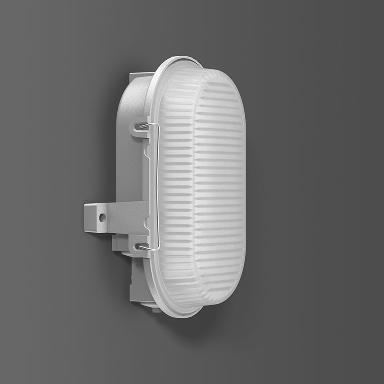 RZB Alu-Standard LED-Wandleuchte, oval, IP66