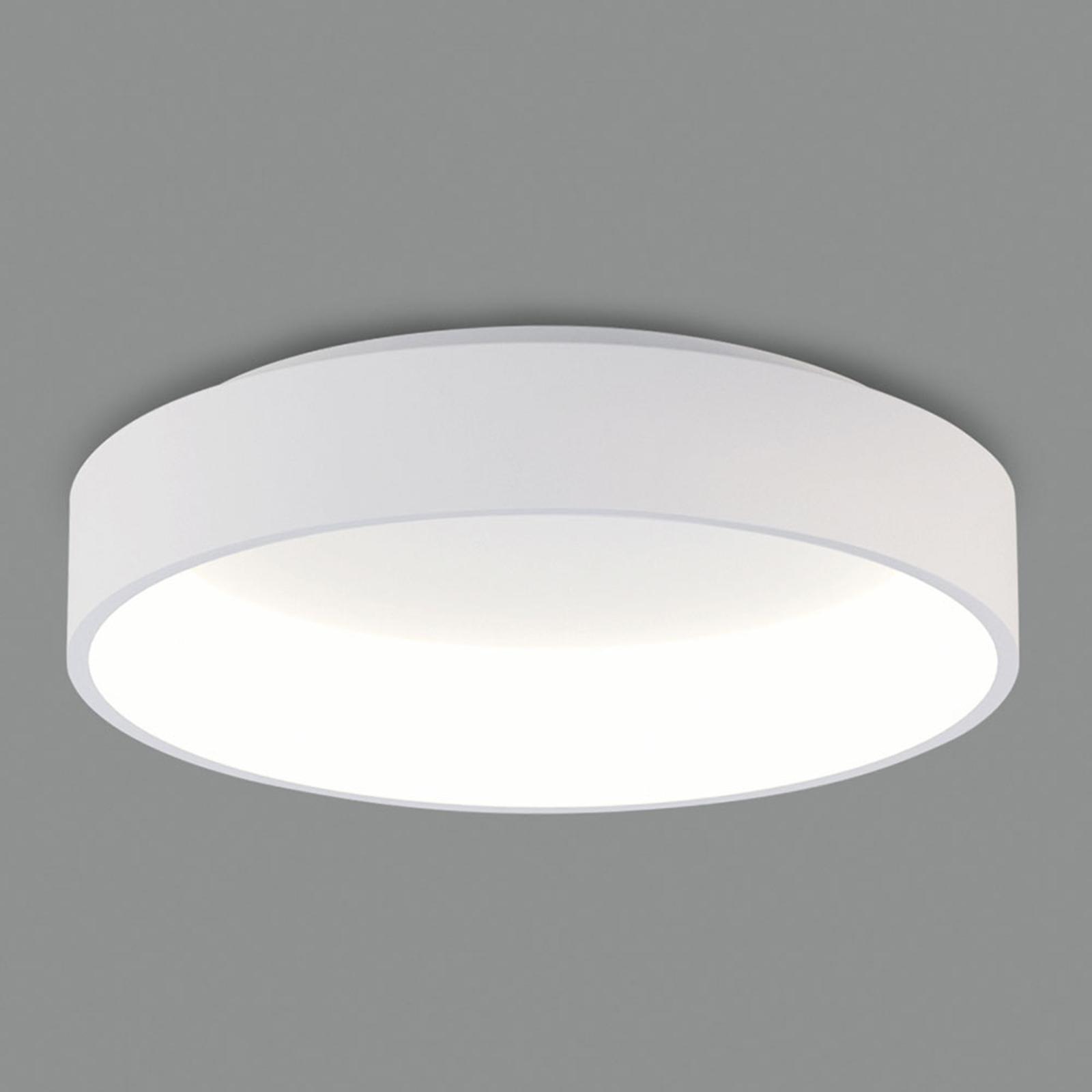 LED-taklampe Dilga DALI Ø 60 cm Casambi hvit