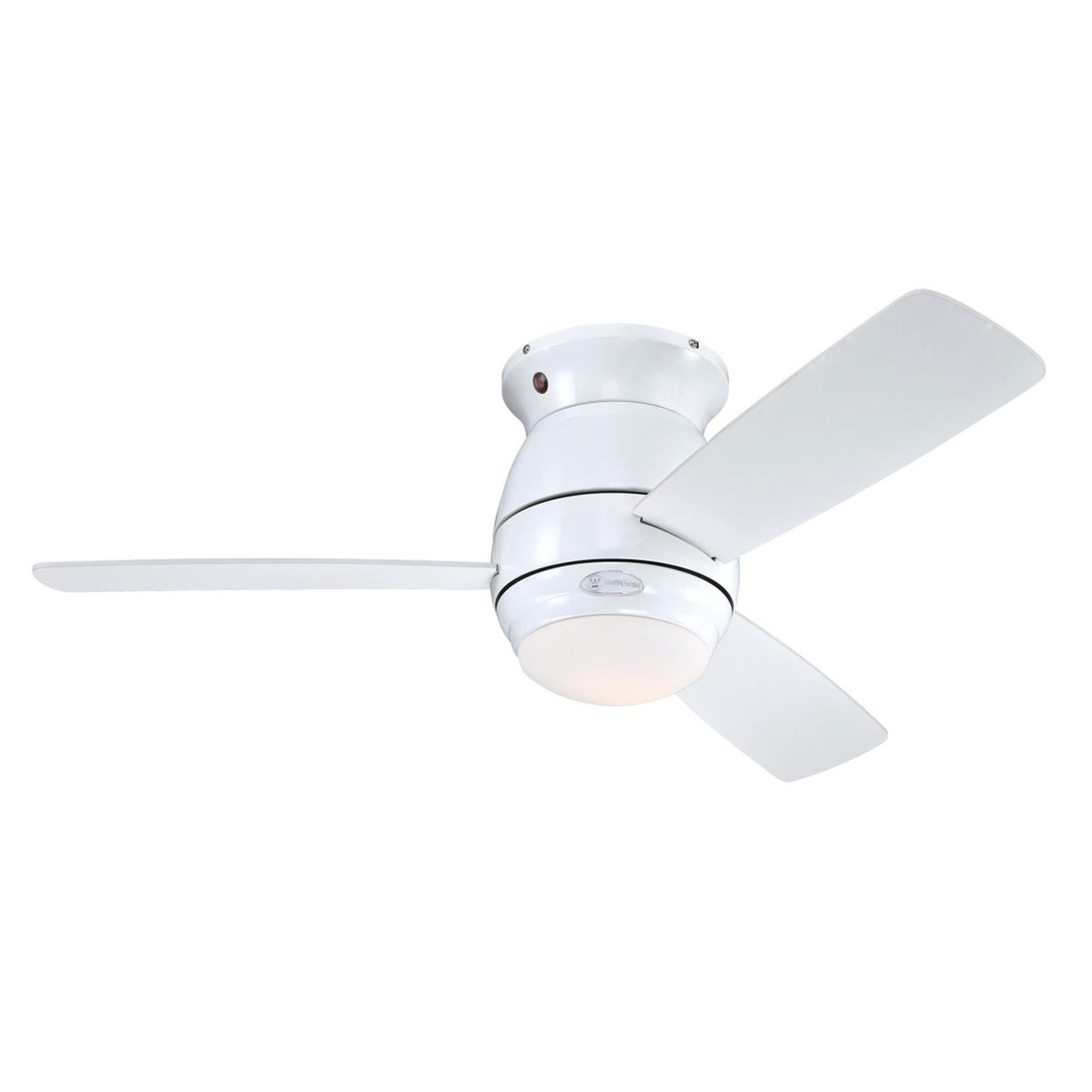 Westinghouse Halley ventilateur, blanc/érable