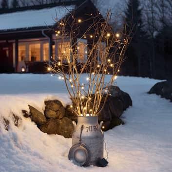 Ghirlanda luminosa LED Ole a 80 luci, con sensore