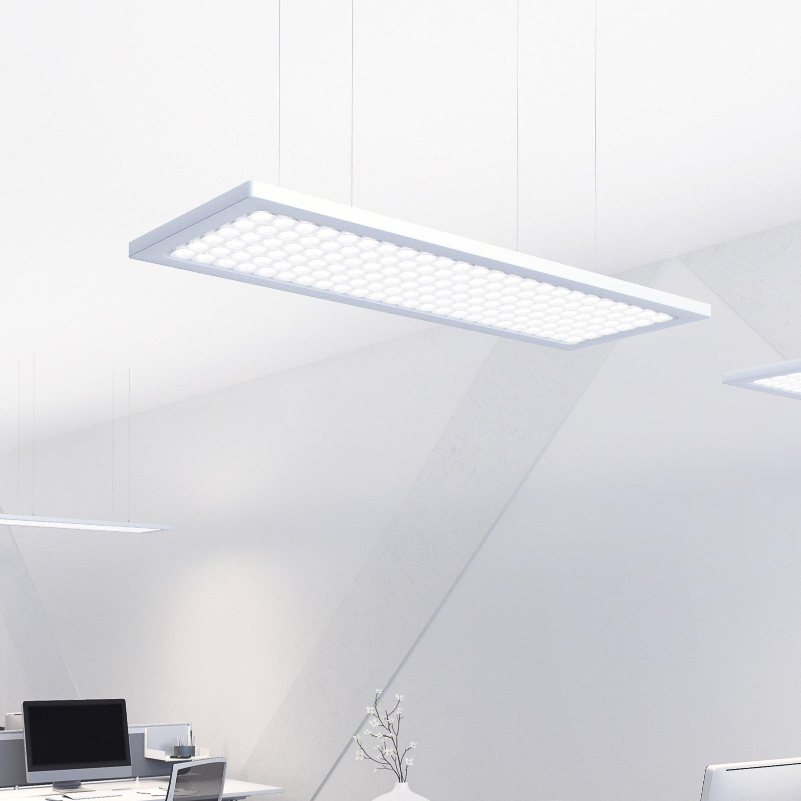 Regent Dime Office suspension LED 51W 4000K