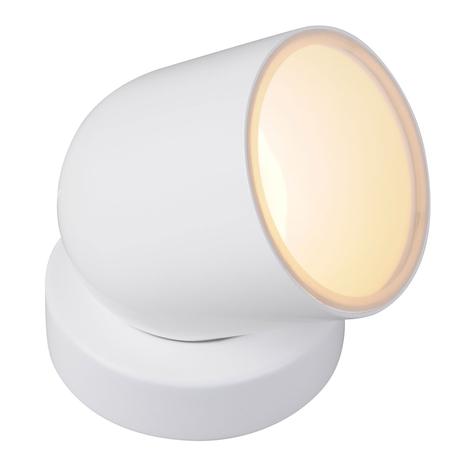 iDual Tulip lampe à poser LED RGBW, télécommande