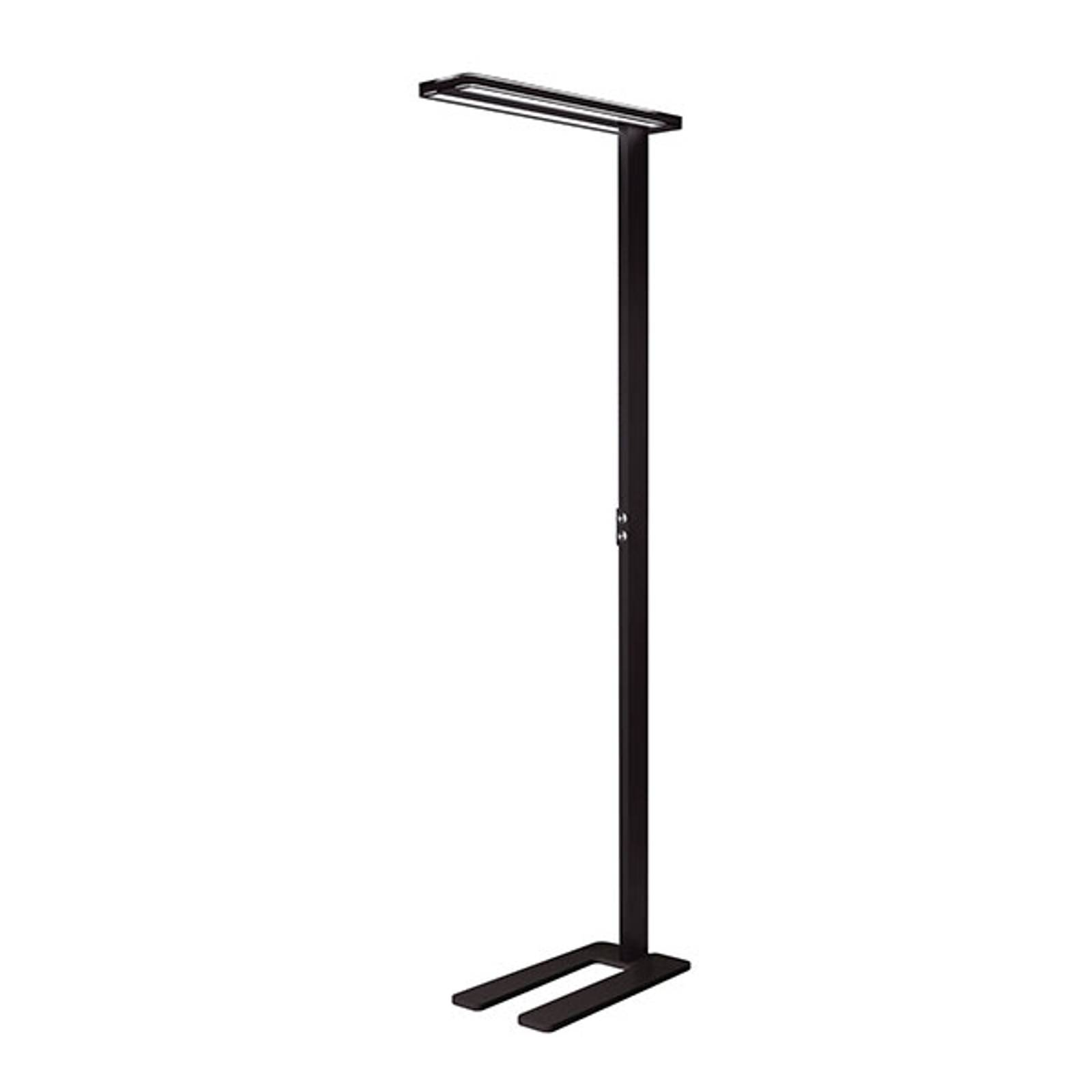 Lampadaire LED Trentino II, dimmable, noir