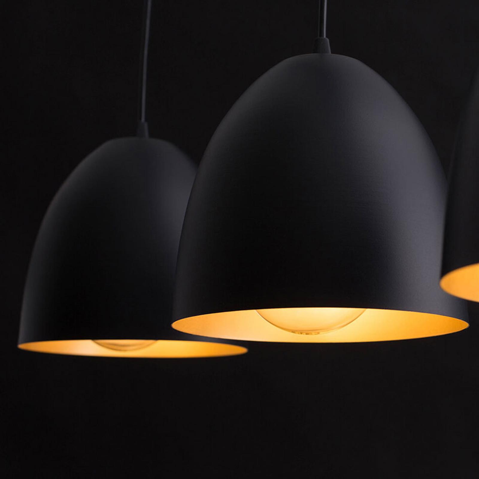 Hanglamp Lenox, 2-lamps, zwart/goud