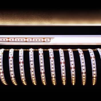 Flexibele LED-strip, 100 W, 500x1x0,2 cm