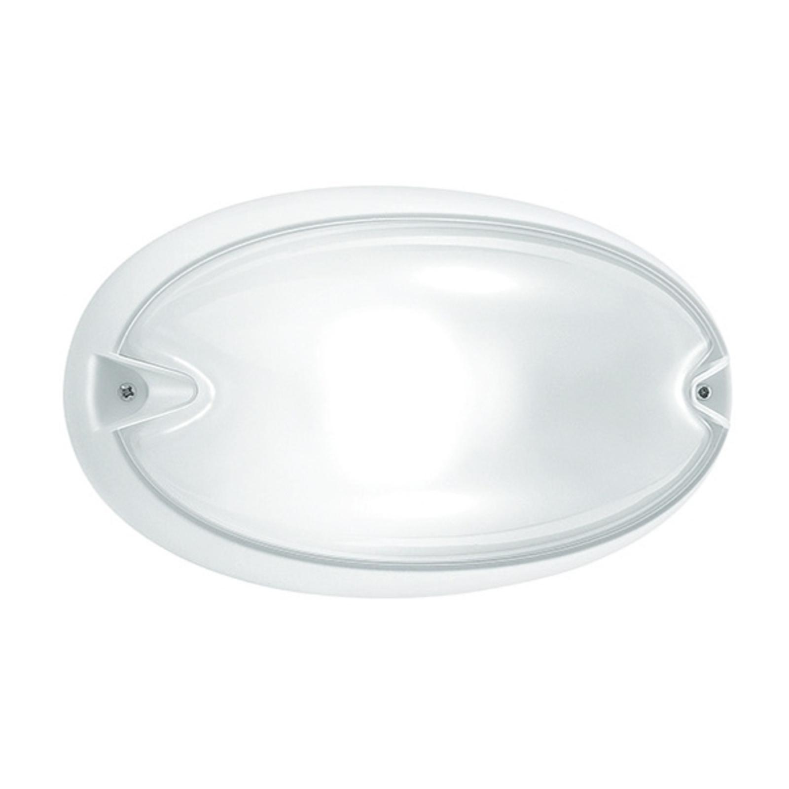 Owalna zewnętrzna lampa ścienna CHIP, biała