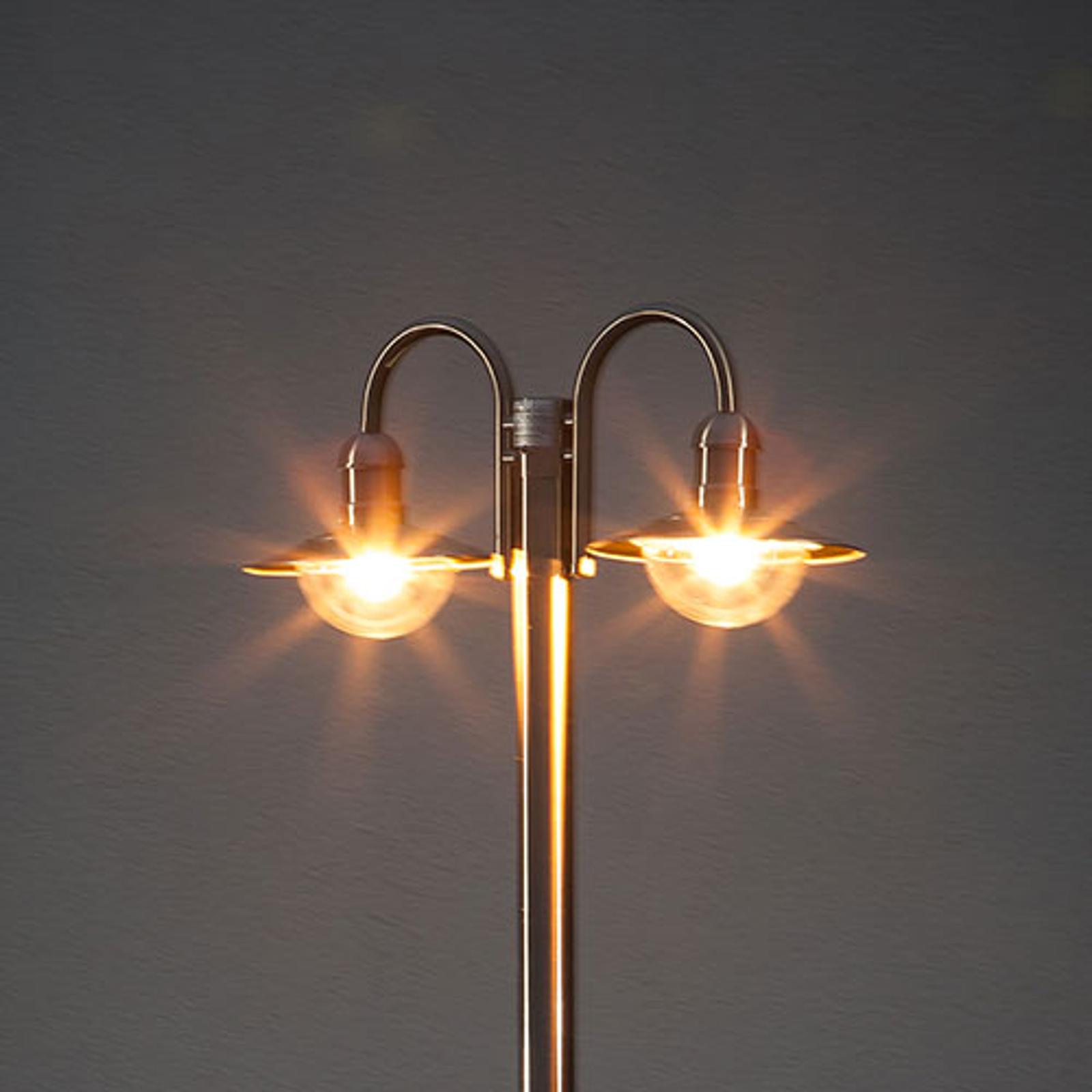 Roestvrijstalen lantaarnpaal Damion, 2 lampkoppen