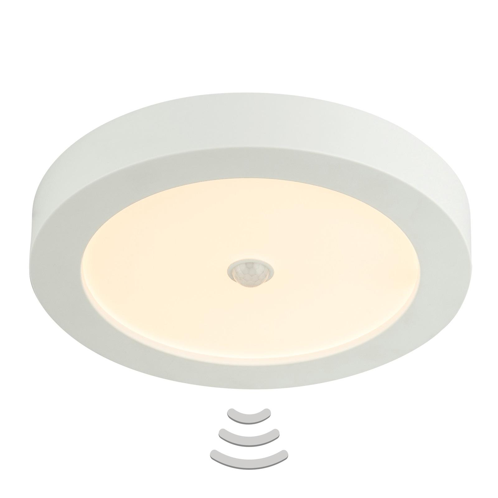 LED-Deckenleuchte Paula 18 W mit Bewegungsmelder