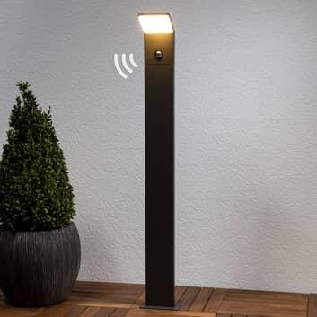 LED-weglamp Naja in grafietgrijs