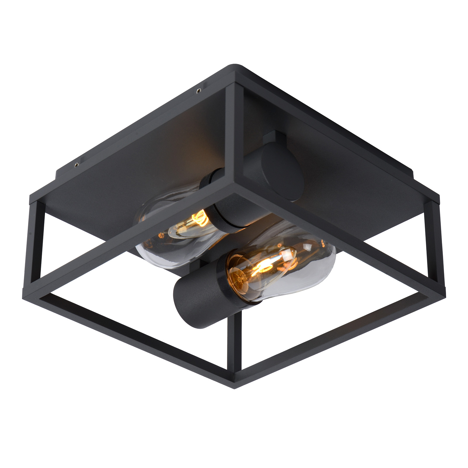 Plafondlamp Carlyn badkamer 2-lamps zwart