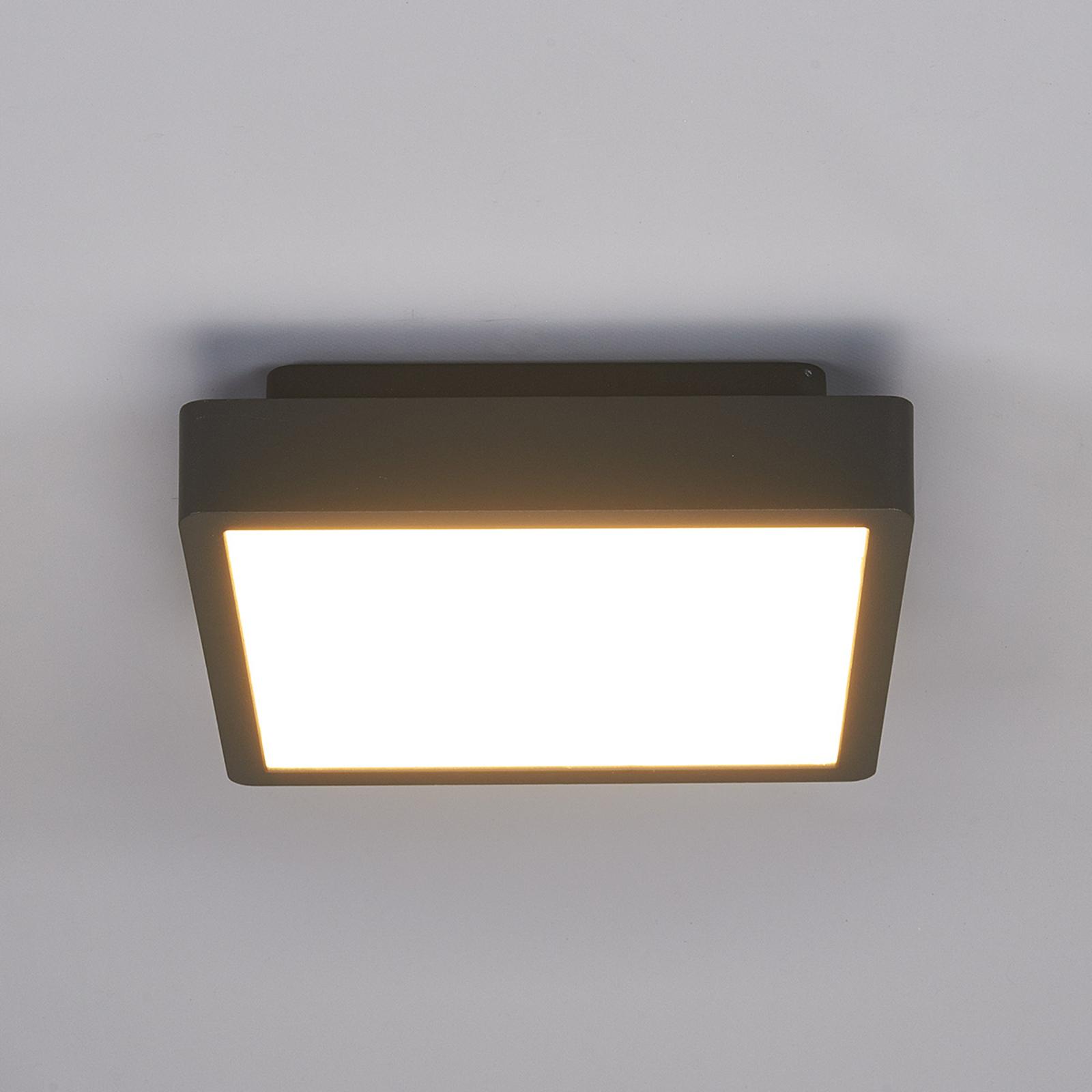 Prostokątna zewnętrzna lampa sufitowa LED Talea