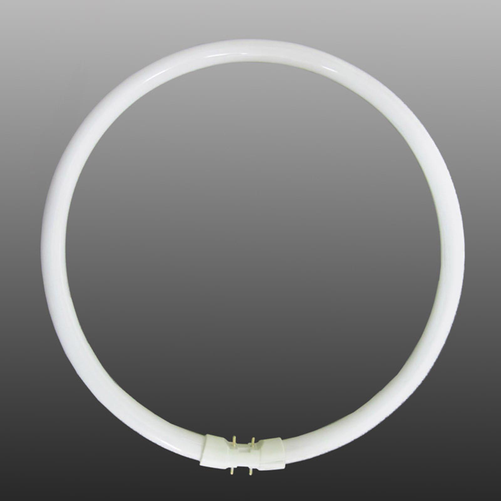 2GX13 T5 22W ringformet lysstofrør, varmhvid