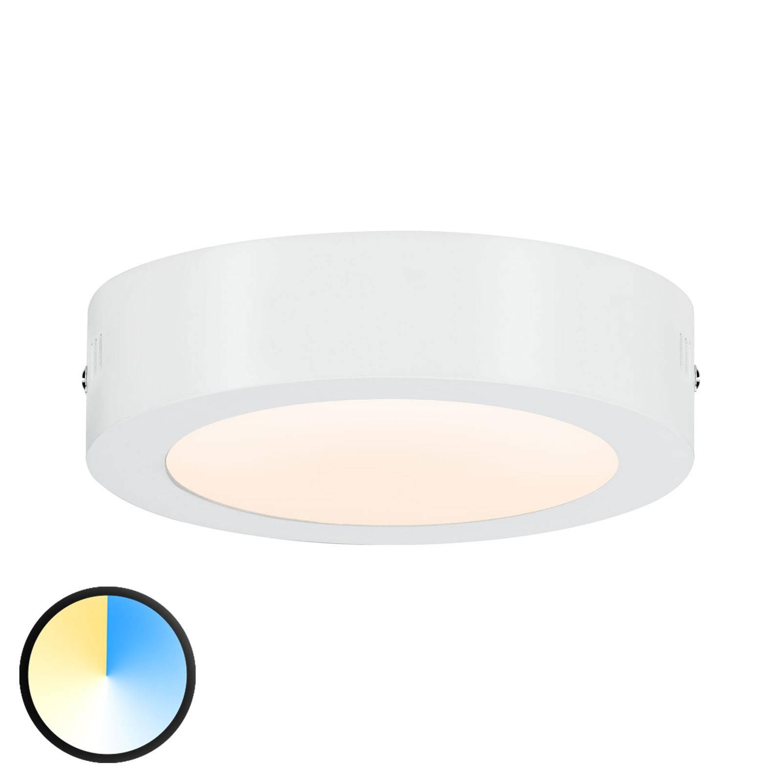 Paulmann Carpo LED plafondlamp rond wit 17cm