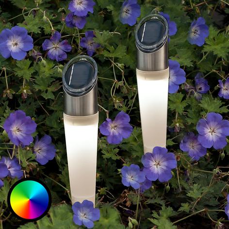 Lampe sur piquet solaire RVB LED Assisi, lot de 2
