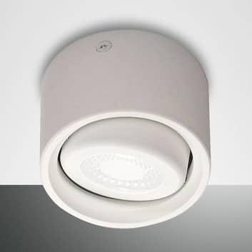 Schwenkbarer Kopf - LED-Downlight Anzio
