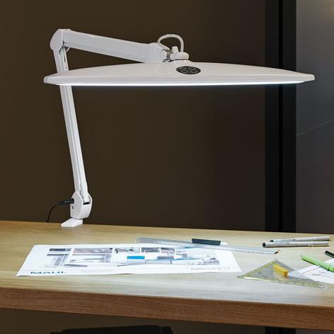 Dimbare LED lamp Work