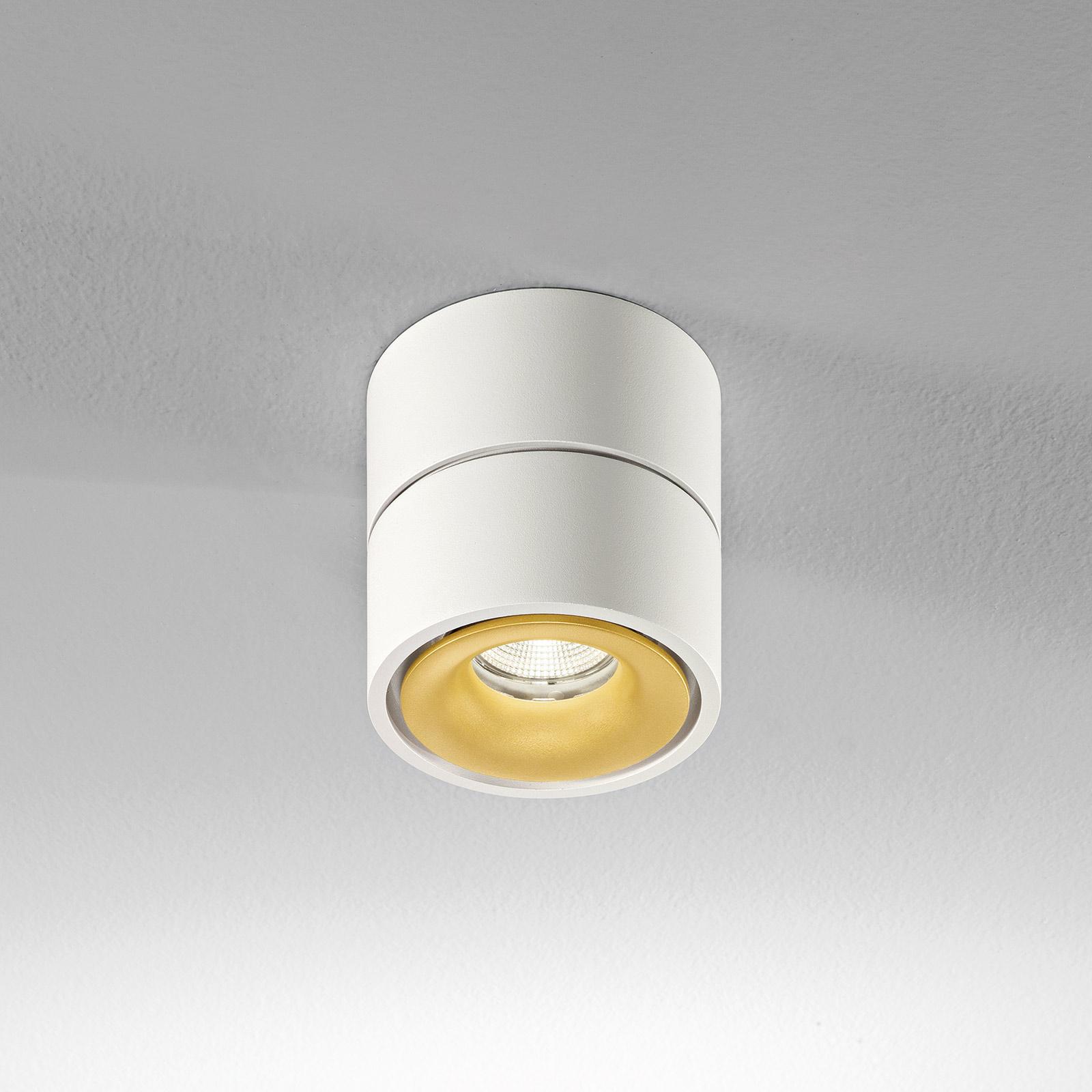 Egger Clippo LED-Deckenspot dim-to-warm weiß/gold