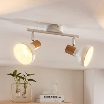 2zdrojové stropní bodové osvětlení Fridolin, bílé