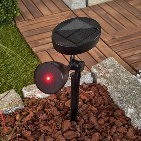 Efektowna i dekoracyjna lampa solarna LED Kari