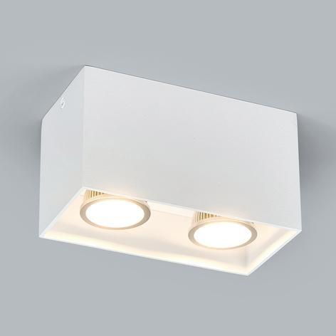 Spot en saillie à deux lampes Carson en blanc