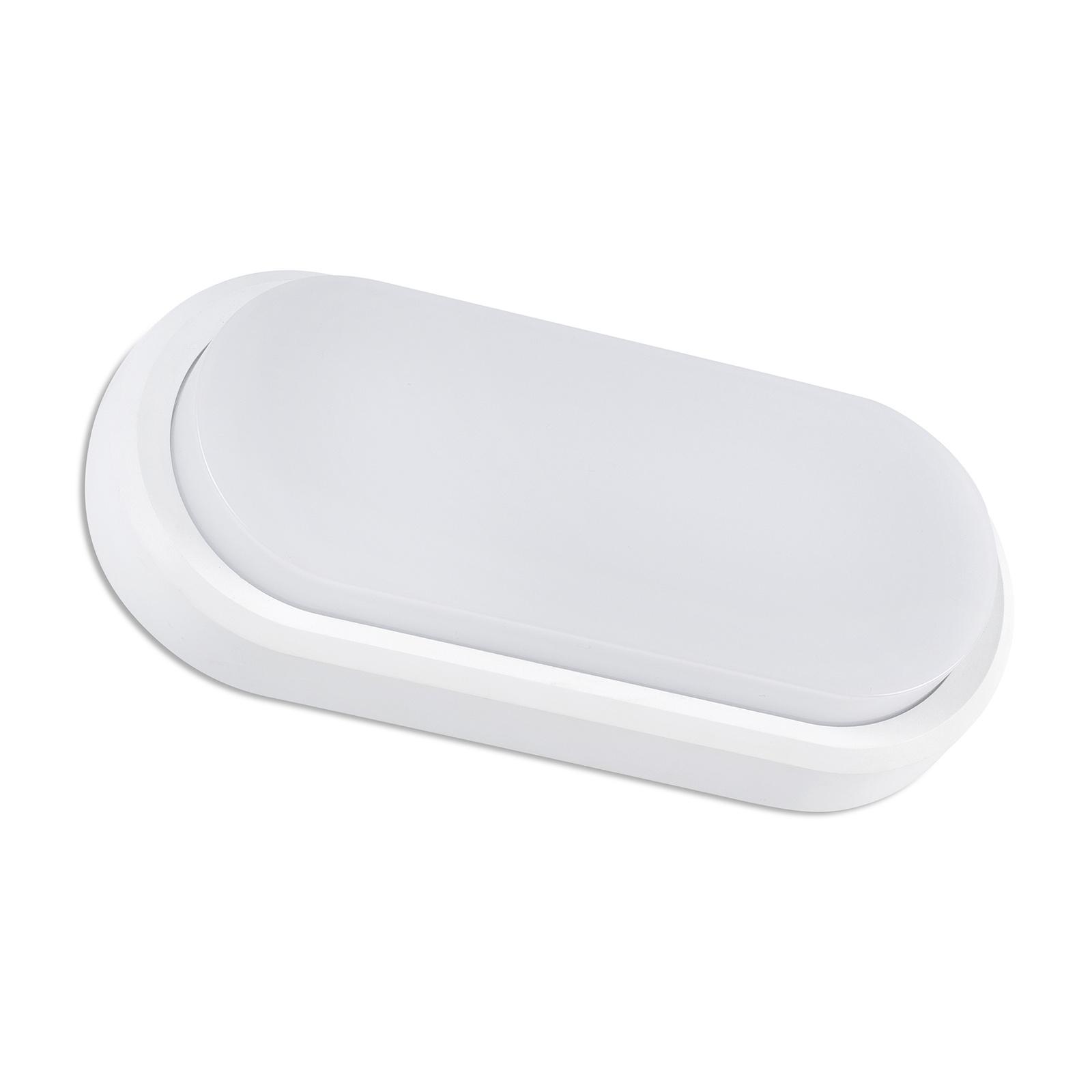 LED buitenwandlamp Fred XL IK10 wit