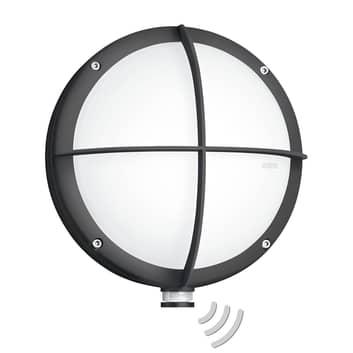 STENEL L 331 LED-utomhusvägglampa sensor galler