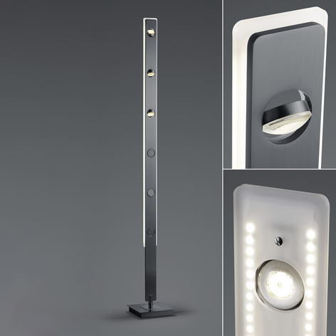 BANKAMP Caro LED-Stehlampe steuerbar anthrazit