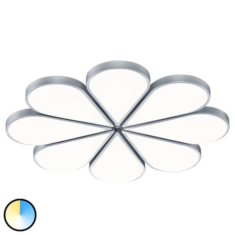 B-Leuchten Flower plafón LED CCT