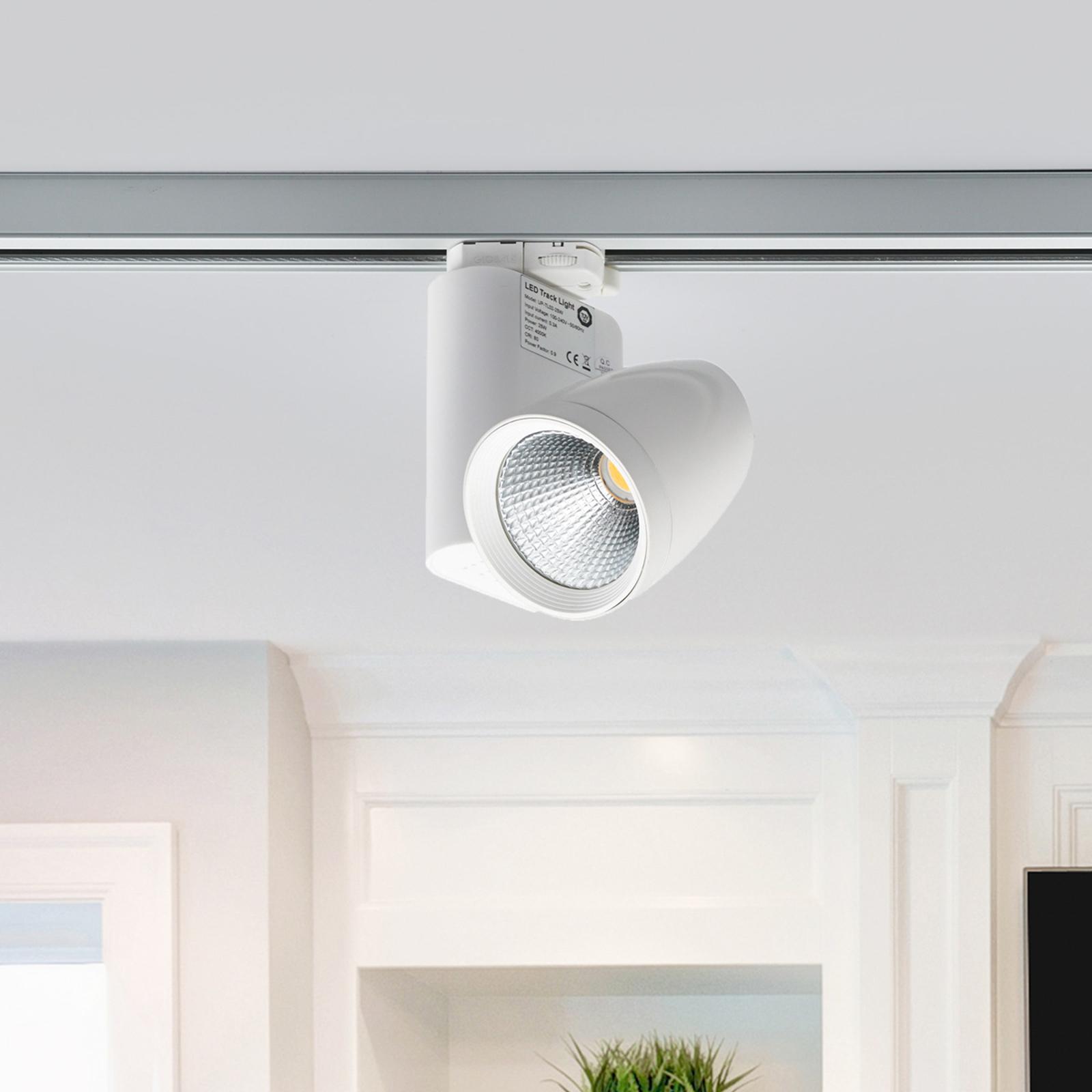 Spot LED pour système de rails triphasé Colin