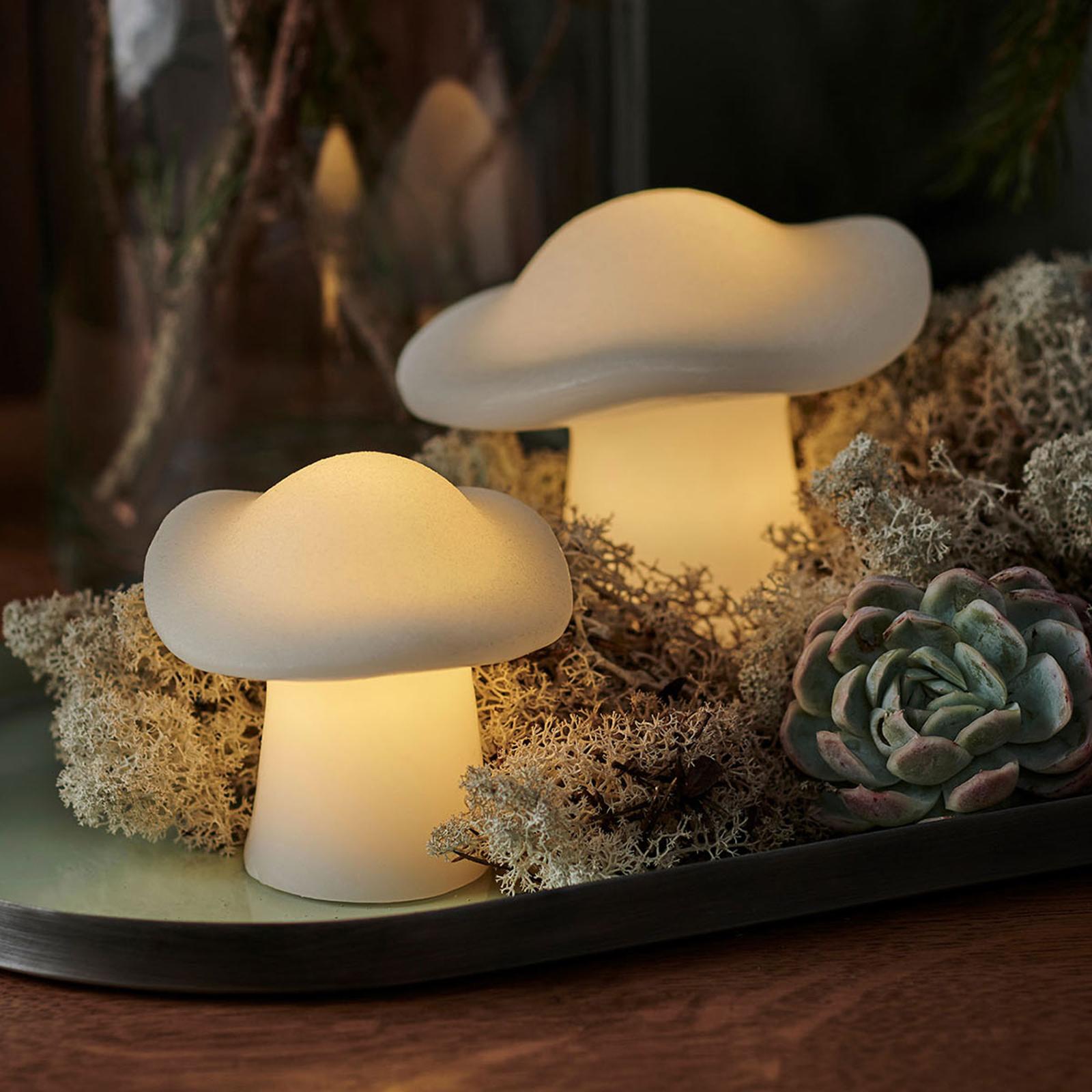 LED-Dekoleuchte Mushroom 2er-Set