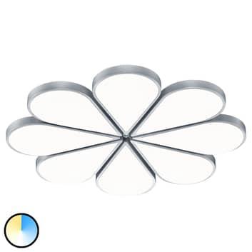 B-Leuchten Flower LED stropní svítidlo CCT