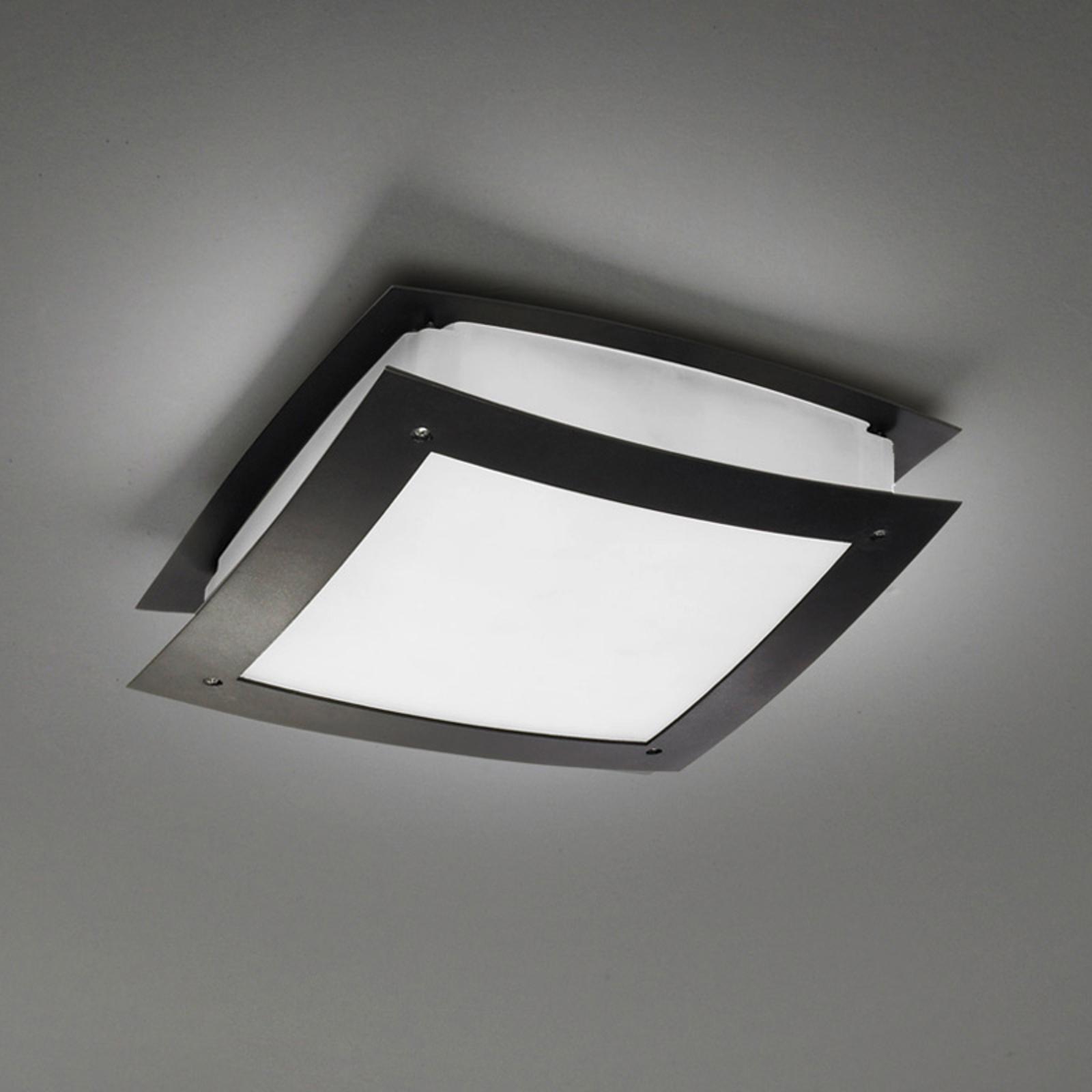 Mooie buitenplafondlamp Darwin