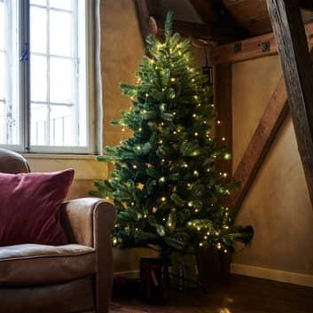 LED-boom Anni met standaard voor binnen
