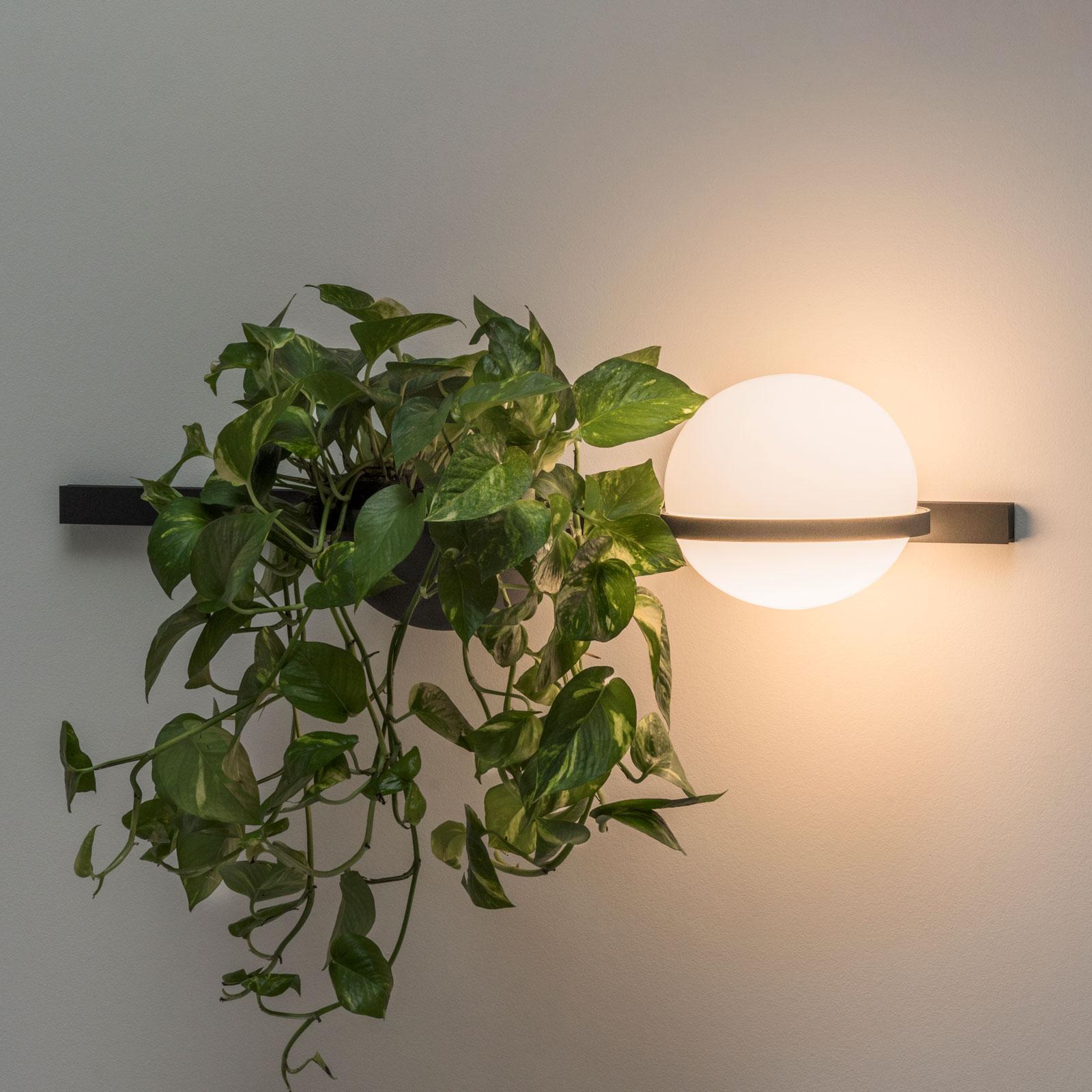 Vibia Palma 3702 wandlamp, plantenschaal, grafiet