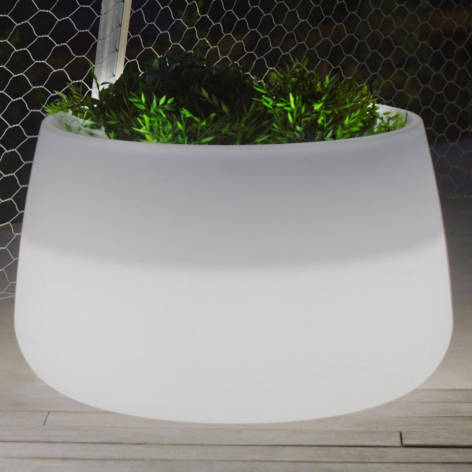 Newgarden Camelia 60 vaso piante LED solar+accu