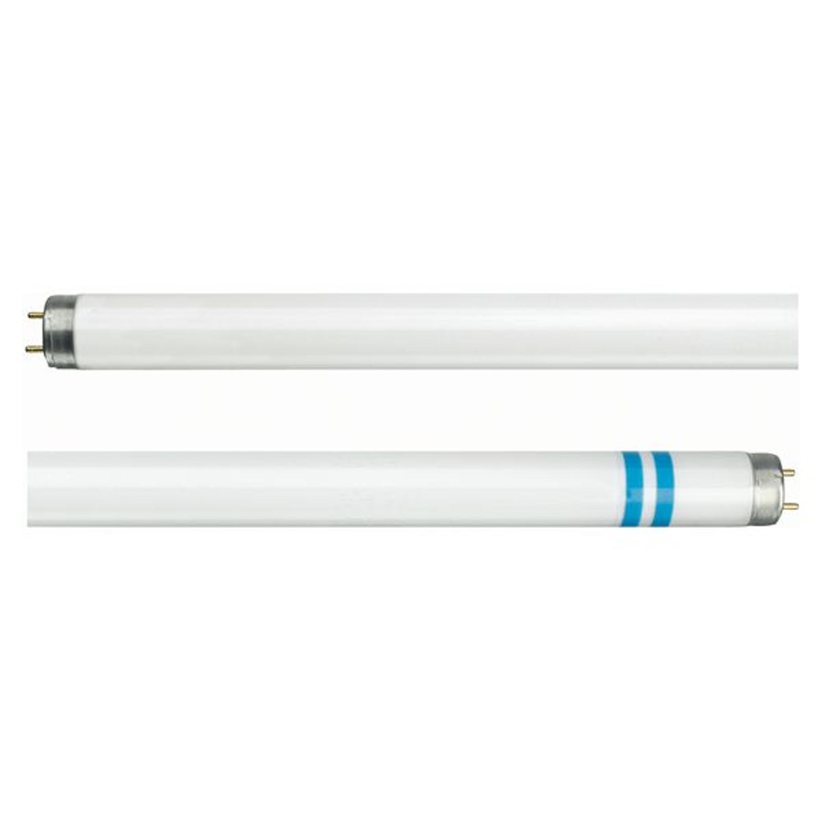 G13 T8 lysstofrør med sikkerhedsglas