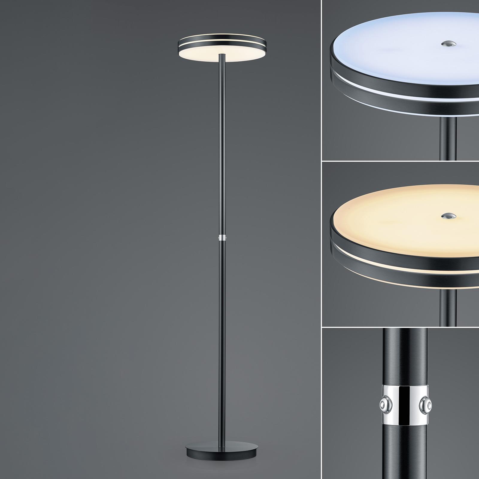 BANKAMP Gem lampadaire LED, variateur, anthracite