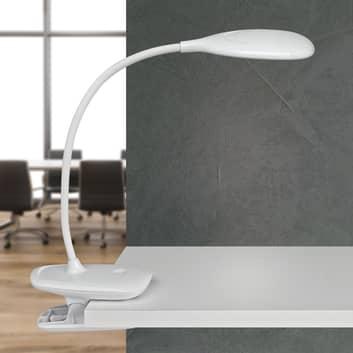 LED stolní lampa MAULjack baterie, stmívatelná