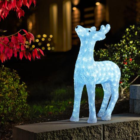 Strahlendes LED Rentier für draußen 60cm