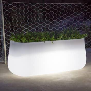 Newgarden Camelia Large plantespand LED solcelle