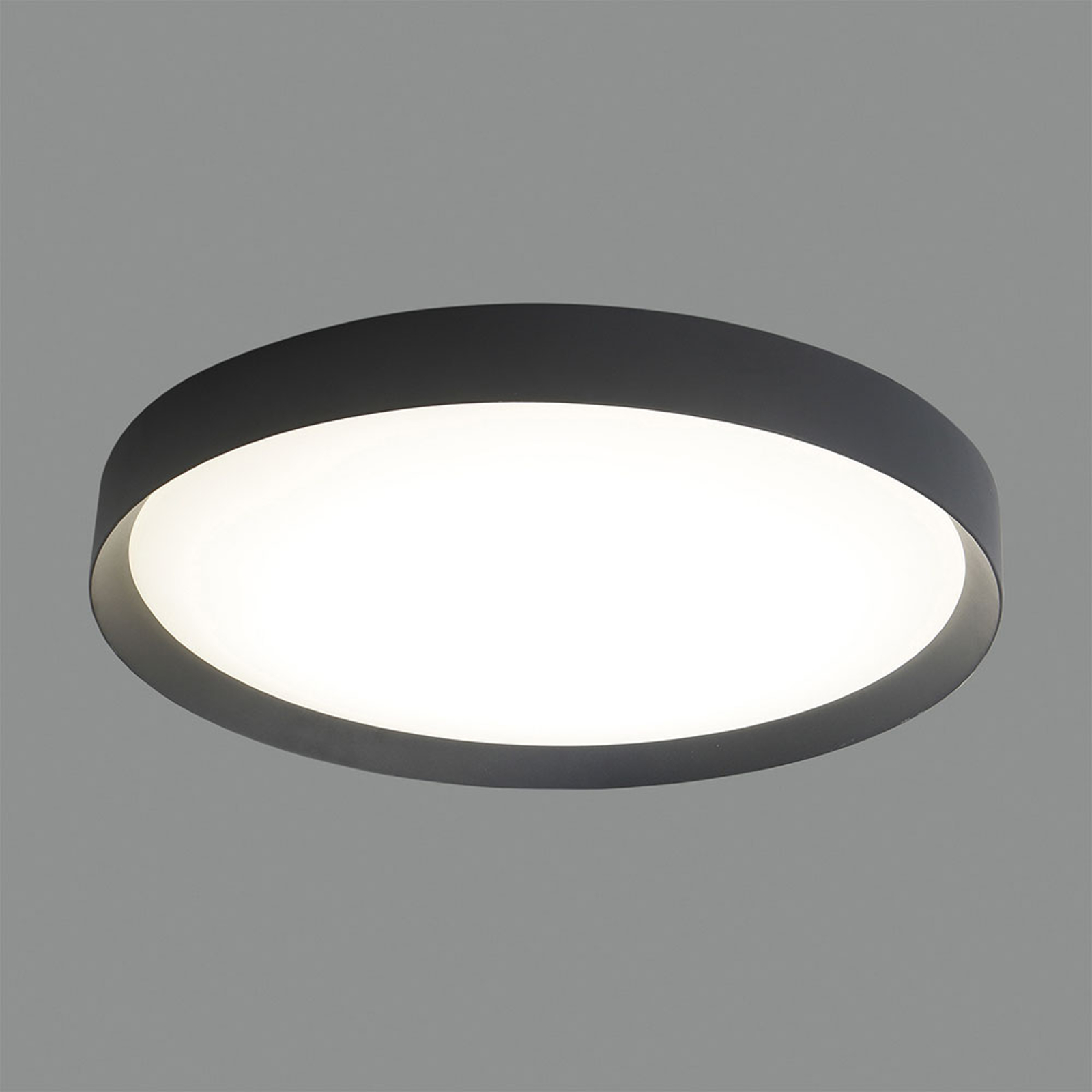 LED-Deckenlampe Minsk DALI Ø 60cm Casambi schwarz